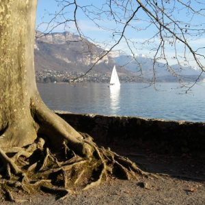 manence-annecy-sophrologie-coaching-relaxation-sante-carre
